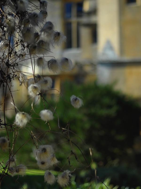 Sudeley Springtime